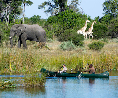 Wild Planet Adventures picks Zambia for one of its top up-and-coming destinations in 2015: Zambia is the birthplace of the walking safari and home to Africa's best canoe safari, on the Zambezi River at the UNESCO World Heritage Site of Mana Pools.