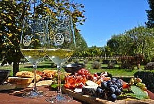 Savor the Best of New Zealand Food & Wine with a New Curated Tour
